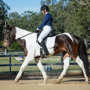 LVRC Masters Dressage (Sand Arena) - All images are basic edits. The easiest way to order your images is to add the image/s to your favourites then email...