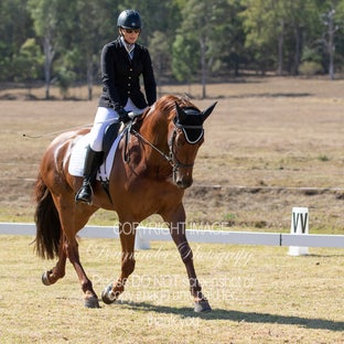IDSHA Dressage 2019 - Images have now been upload orders maybe purchased via email to Donna -  downunderphotography@bigpond.com Please advise file names...