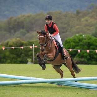 Elysian Showjumping Training Day - Top day for riders to have prep and training for showjumping on one of the most amazing fields...