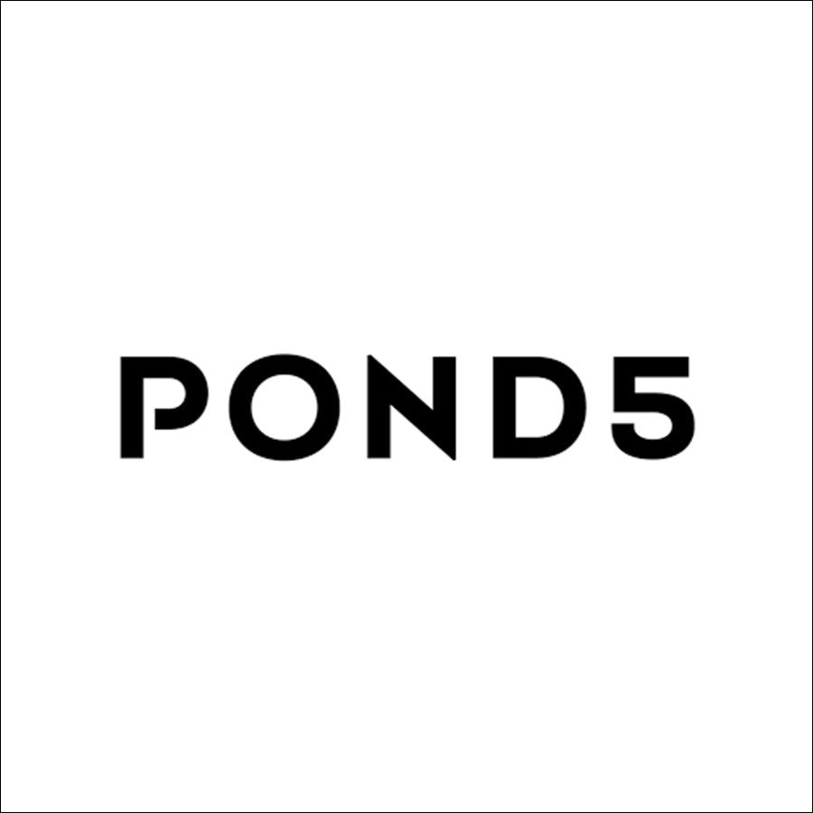 Icon - Pond 5