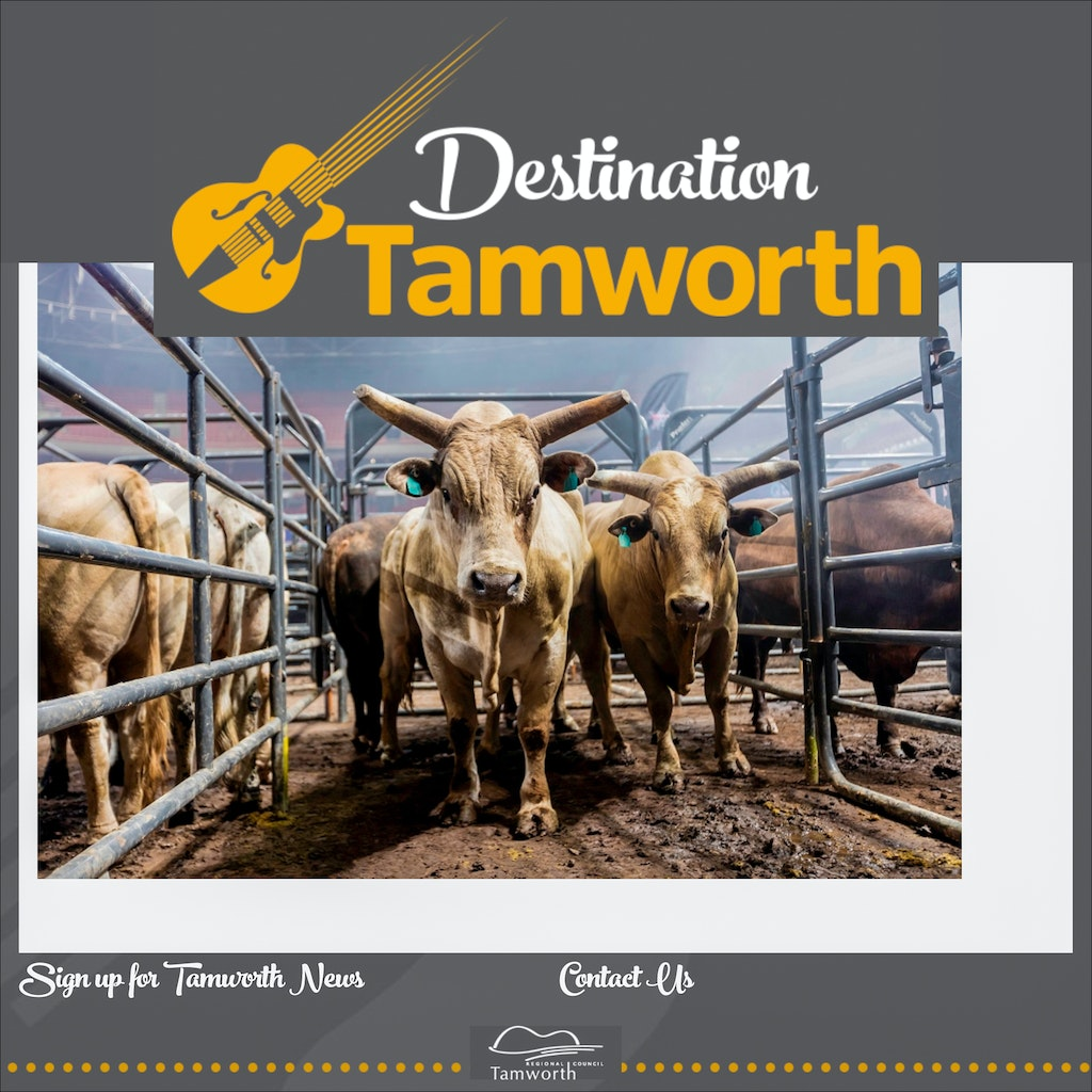 Destination Tamworth