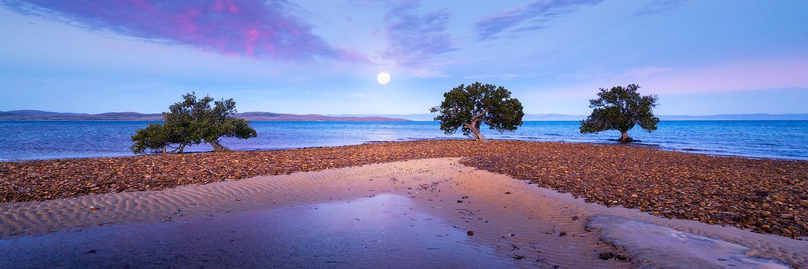 Moonshine - Eyre Peninsula, SA