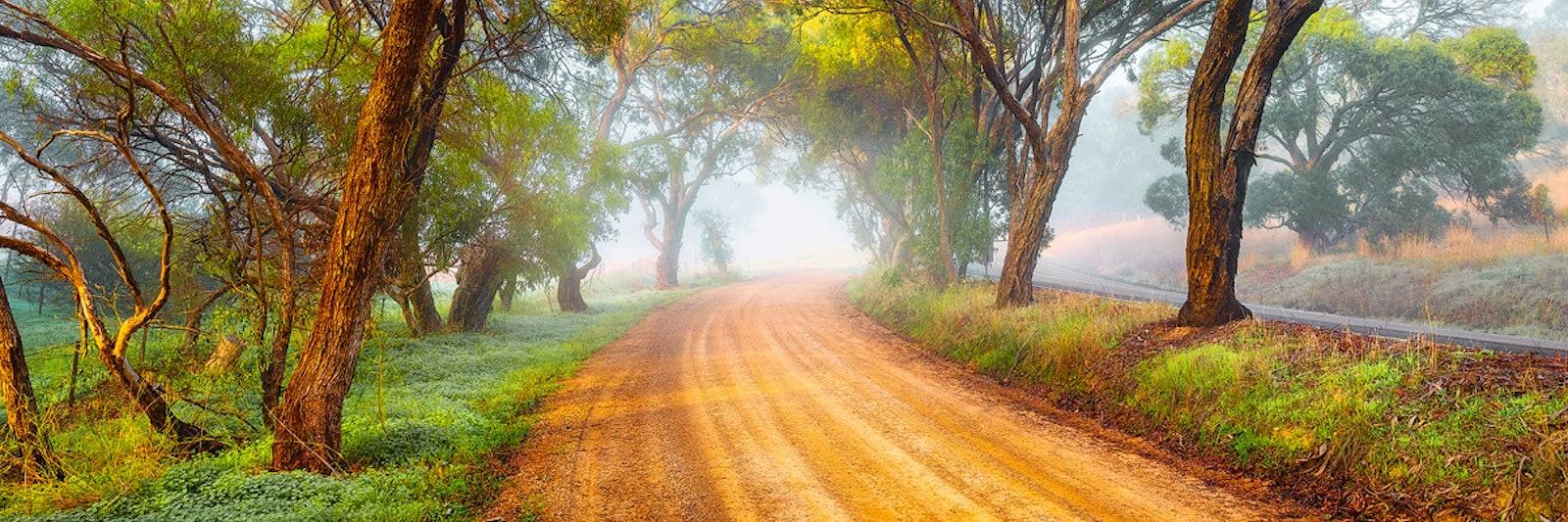 Moirai - Adelaide Hills, SA