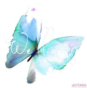 2017 butterfly