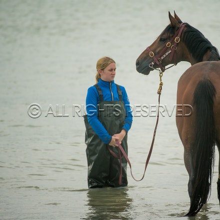 Warrnambool Beach, Amelie's Star_01-11-17, Sharon Lee Chapman_0026