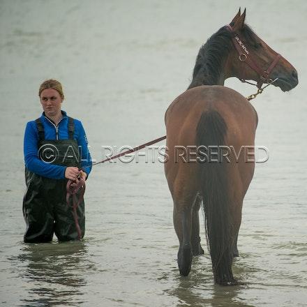 Warrnambool Beach, Amelie's Star_01-11-17, Sharon Lee Chapman_0025