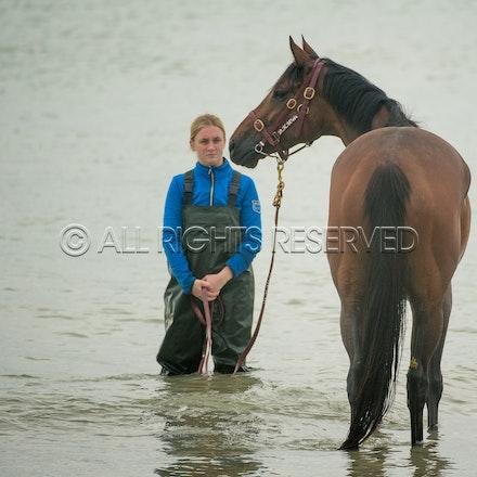 Warrnambool Beach, Amelie's Star_01-11-17, Sharon Lee Chapman_0027