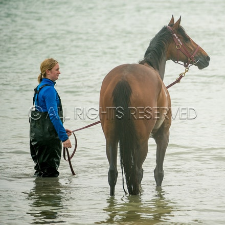 Warrnambool Beach, Amelie's Star_01-11-17, Sharon Lee Chapman_0028