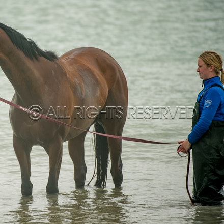 Warrnambool Beach, Amelie's Star_01-11-17, Sharon Lee Chapman_0029