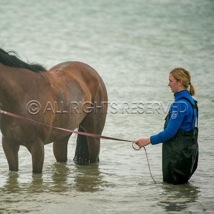 Warrnambool Beach, Amelie's Star_01-11-17, Sharon Lee Chapman_0030