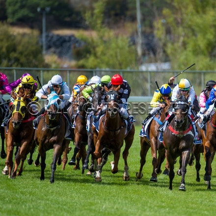 Launceston Cup - 28 February 2018