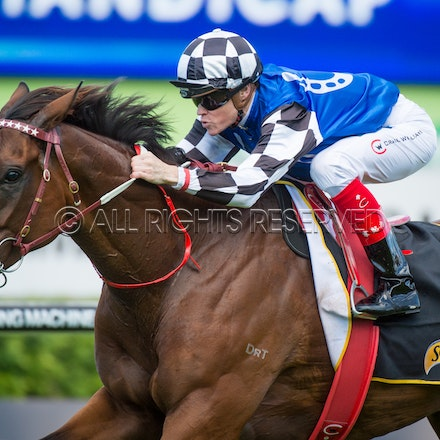 Race 3, Big Duke, Craig Williams_01-04-17, Royal Randwick, Sharon Lee Chapman, WIN_0004