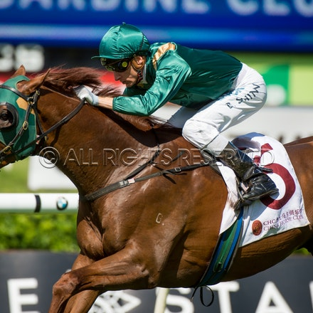 Race 2, Acatour, Blake Shinn_01-04-17, Royal Randwick, Sharon Lee Chapman, WIN_0002