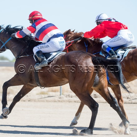 Betoota, Race 1, Starting Gate_25-08-18, Betoota, Sharon Lee Chapman_1112