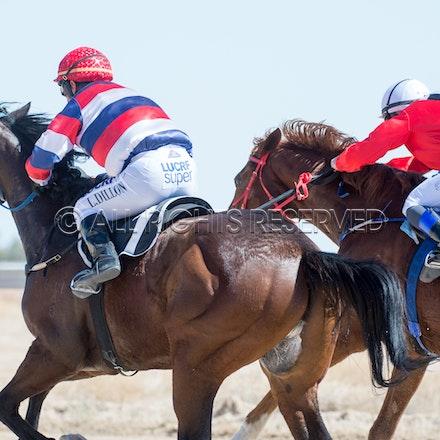 Betoota, Race 1, Starting Gate_25-08-18, Betoota, Sharon Lee Chapman_1113