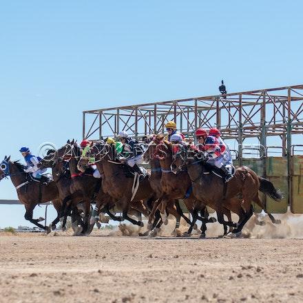 Betoota, Race 1, Starting Gate_25-08-18, Betoota, Sharon Lee Chapman_1117
