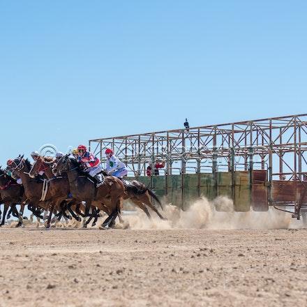 Betoota, Race 1, Starting Gate_25-08-18, Betoota, Sharon Lee Chapman_1118