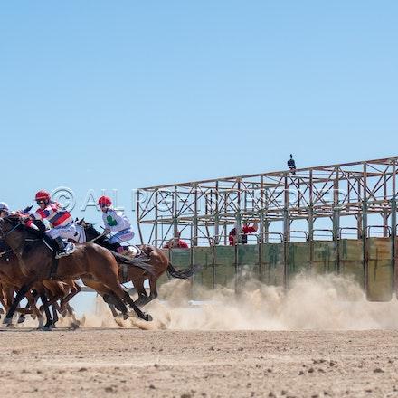 Betoota, Race 1, Starting Gate_25-08-18, Betoota, Sharon Lee Chapman_1119