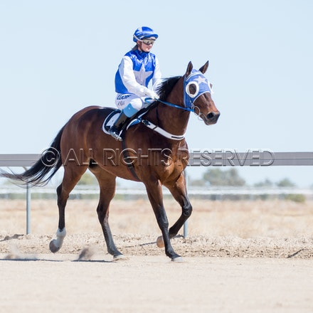Betoota, Race 1, Tabriz, Alisha Ross_25-08-18, Betoota, Sharon Lee Chapman_1087