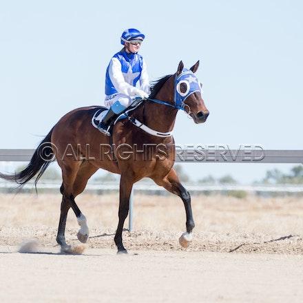 Betoota, Race 1, Tabriz, Alisha Ross_25-08-18, Betoota, Sharon Lee Chapman_1088