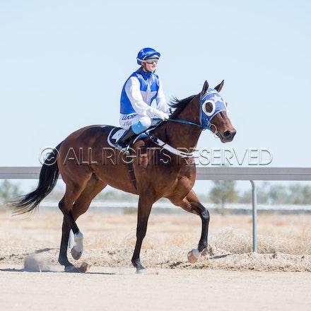 Betoota, Race 1, Tabriz, Alisha Ross_25-08-18, Betoota, Sharon Lee Chapman_1089