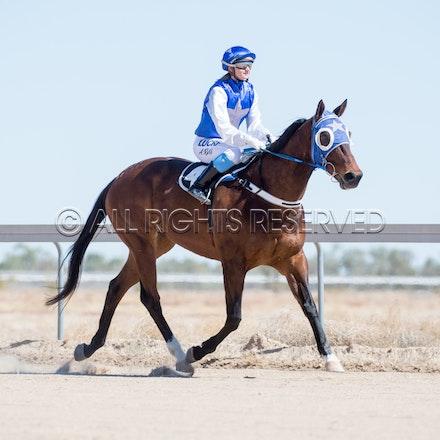 Betoota, Race 1, Tabriz, Alisha Ross_25-08-18, Betoota, Sharon Lee Chapman_1090