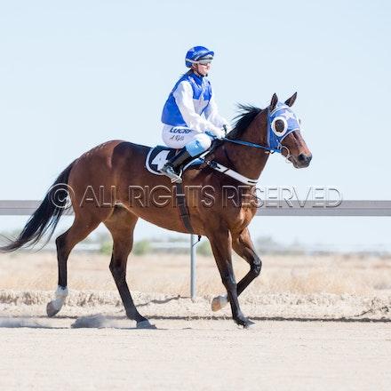Betoota, Race 1, Tabriz, Alisha Ross_25-08-18, Betoota, Sharon Lee Chapman_1091