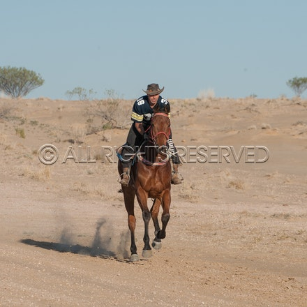 Birdsville, Trackwork_27-08-18, Mark Lee_1400
