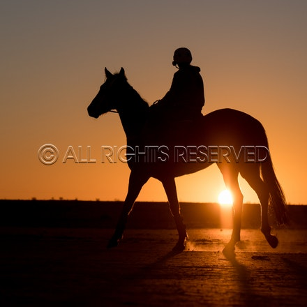 Birdsville Trackwork - Tuesday 28 August 2018