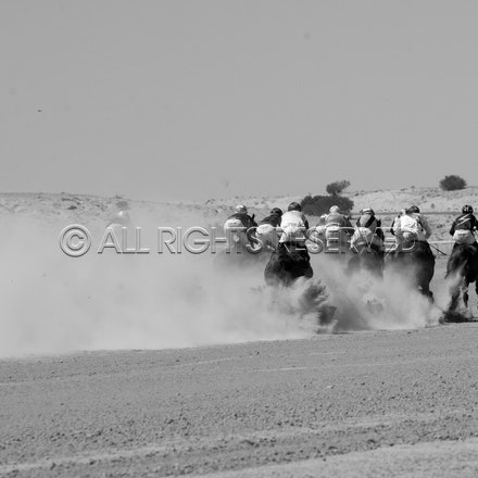 Birdsville, Race 1, Field_31-08-18, Mark Lee_2299