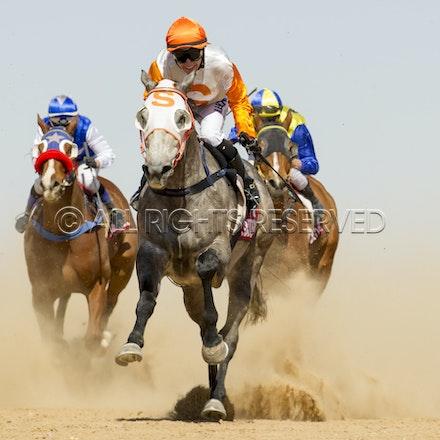 Birdsville, Race 4, Cheers Browe, Tracy O'Hara_05-09-15_389