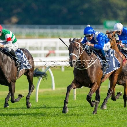 Race 7, Winx, Hugh Bowman_13-04-19, Royal Randwick, Mark Lee_0061