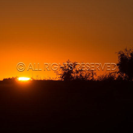 Birdsville, Sunrise_05-09-19, Sharon Lee Chapman_0565