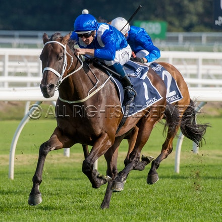 Race 7, Winx, Hugh Bowman_13-04-19, Royal Randwick, Sharon Lee Chapman_0260a