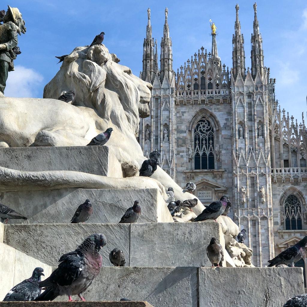 19155-Milan19-9-square