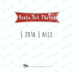 Santa Hat Photos - Alce