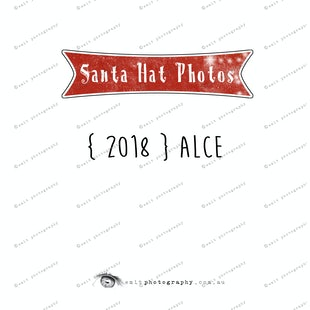 Santa Hat Photos - Alce