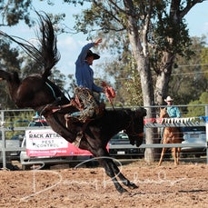 Open Saddle Bronc - Sect 1