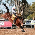 Taroom APRA Rodeo 2018 - Afternoon Performance Session