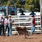 Taroom APRA Rodeo 2018 - Slack Session