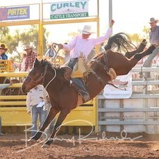 Open Saddle Bronc - Sect 3