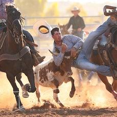 Steer Wrestling - Sect 2
