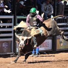 International Challenge - Open Bull Ride - 2018