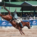 Warwick APRA Rodeo 2018 - Saturday Events