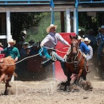 Myrtleford APRA Rodeo 2018 - Slack Session