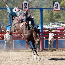 Myrtleford Rodeo 2018 - 2nd Div Bareback - Sect 1