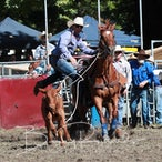Tumbarumba APRA Rodeo 2019 - Slack Session