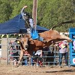 Finley APRA Rodeo 2019 - Slack Session