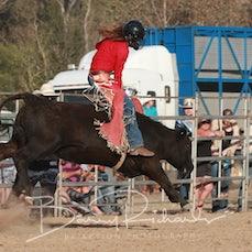 Alexandra Rodeo 2019 - Open Steer Ride - Sect 1
