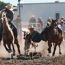 Yarra Valley Rodeo 2019 - Steer Wrestling - Sect 1